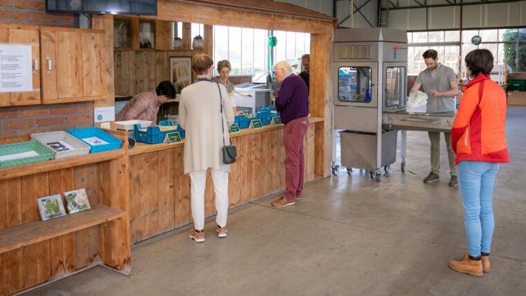 De Lierse asperges - Hoevewinkel - Vers uit het zand, recht naar de klant!